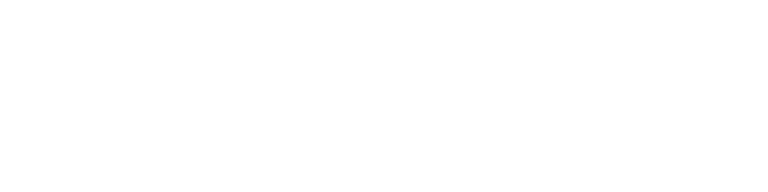 CYS Group Inc Logo